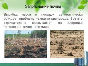 Загрязнение почвы Вырубка лесов и посадок автоматически рождает проблему нехв