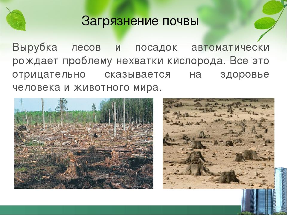 Загрязнение почвы Вырубка лесов и посадок автоматически рождает проблему нехв...