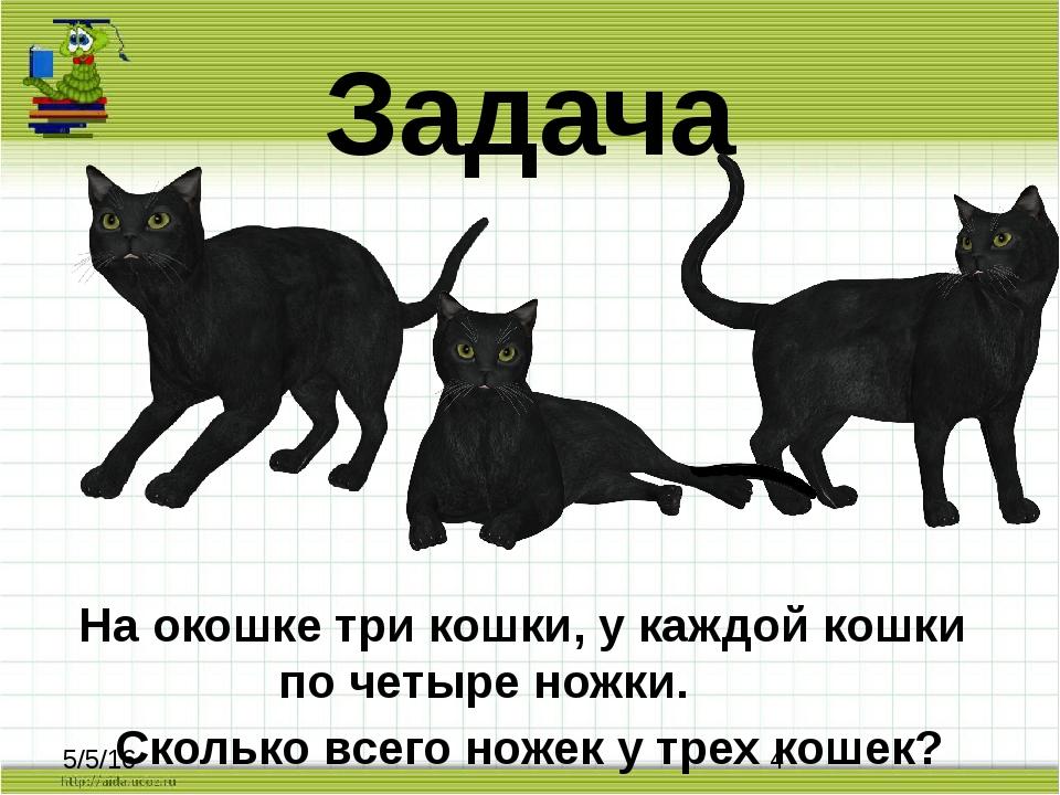 Задача На окошке три кошки, у каждой кошки по четыре ножки. Сколько всего нож...