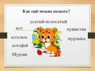 Как ещё можно назвать? Мурзик кот котенок котофей усатый-полосатый пушистик м