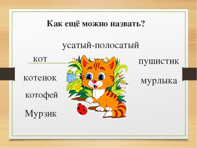 Как ещё можно назвать? Мурзик кот котенок котофей усатый-полосатый пушистик м...