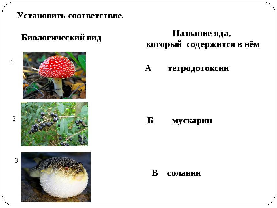 Установить соответствие. 1. Биологический вид Название яда, который содержитс...