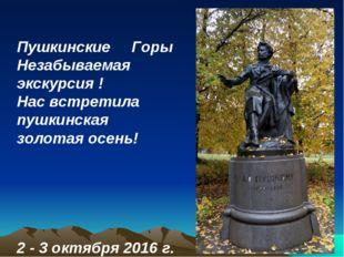 Пушкинские Горы Незабываемая экскурсия ! Нас встретила пушкинская золотая осе