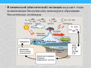 В химической (абиотической) эволюции выделяют этапы возникновения биологическ