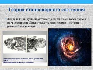 Теория стационарного состояния Земля и жизнь существуют всегда, виды изменяют
