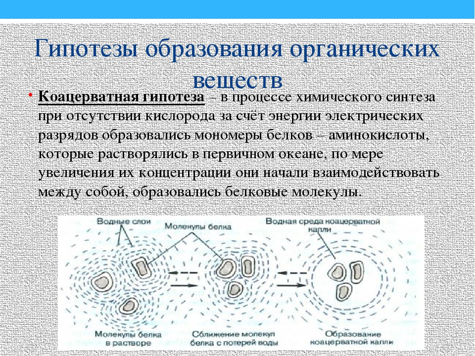 Гипотезы образования органических веществ Коацерватная гипотеза – в процессе...