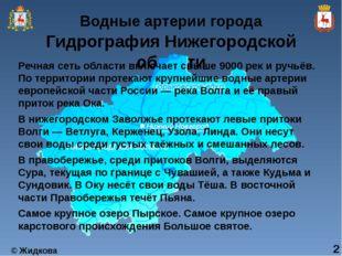 Гидрография Нижегородской области Речная сеть области включает свыше 9000 рек