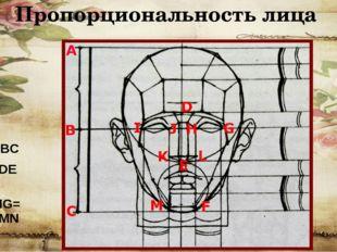 Пропорциональность лица AB=BC FD=DE=EO IF=HG=KL=MN