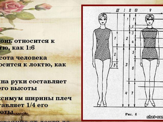 Ладонь относится к локтю, как 1:6 Высота человека относится к локтю, как 4:1...