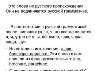 Это слова не русского происхождения. Они не подчиняются русской грамматике.