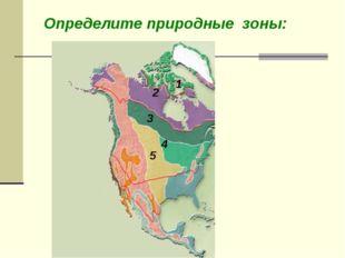 Определите природные зоны: Степи Тайга Тундра Арктические пустыни Смешанные и