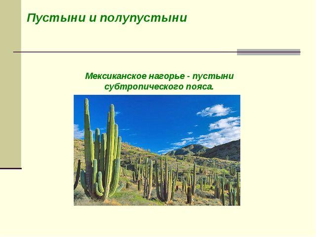Пустыни и полупустыни Мексиканское нагорье - пустыни субтропического пояса.