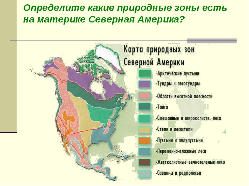 Определите какие природные зоны есть на материке Северная Америка?