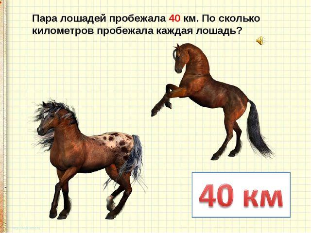 Пара лошадей пробежала 40 км. По сколько километров пробежала каждая лошадь?