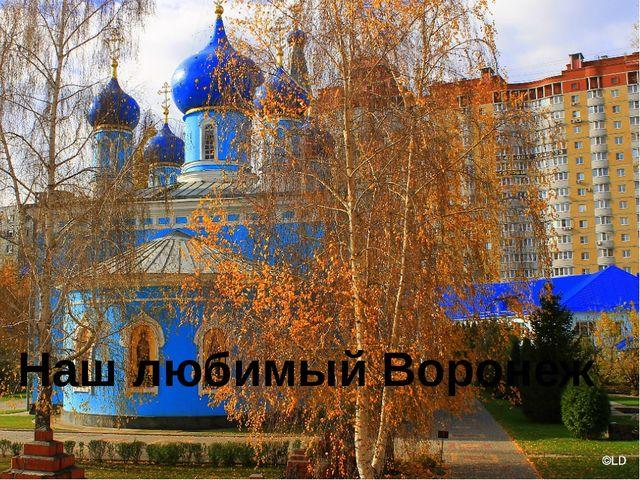 Наш любимый Воронеж