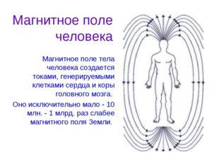 Магнитное поле тела человека создается токами, генерируемыми клетками сердца