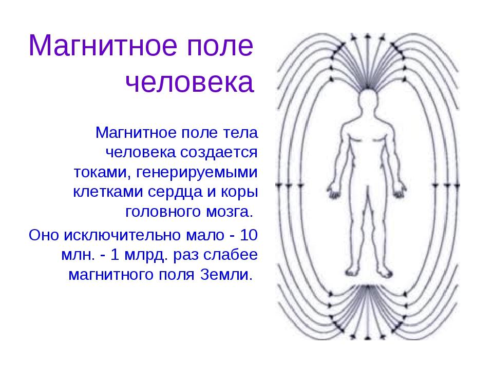 Магнитное поле тела человека создается токами, генерируемыми клетками сердца...