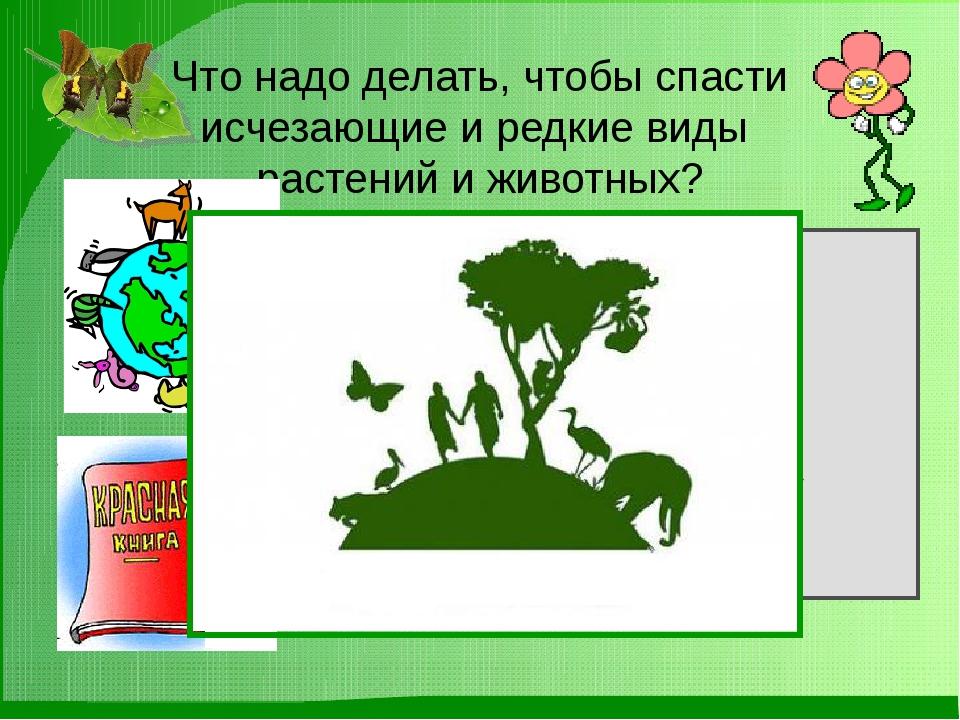 Домашние задание. Написать обращение к народу, о сохранение растений и животн...