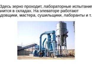 Здесь зерно проходит, лабораторные испытания и хранится в складах. На элеват