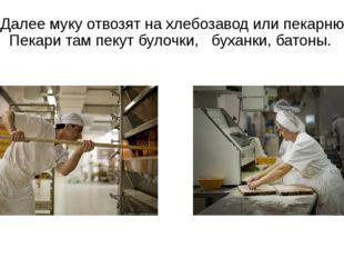 Далее муку отвозят на хлебозавод или пекарню. Пекари там пекут булочки, буха