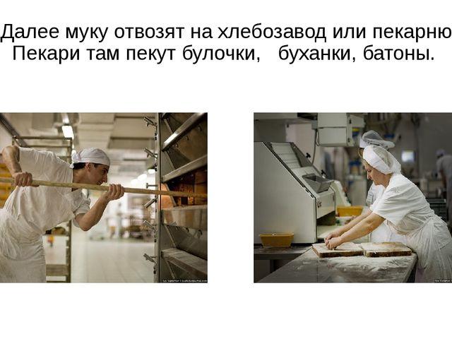 Далее муку отвозят на хлебозавод или пекарню. Пекари там пекут булочки, буха...