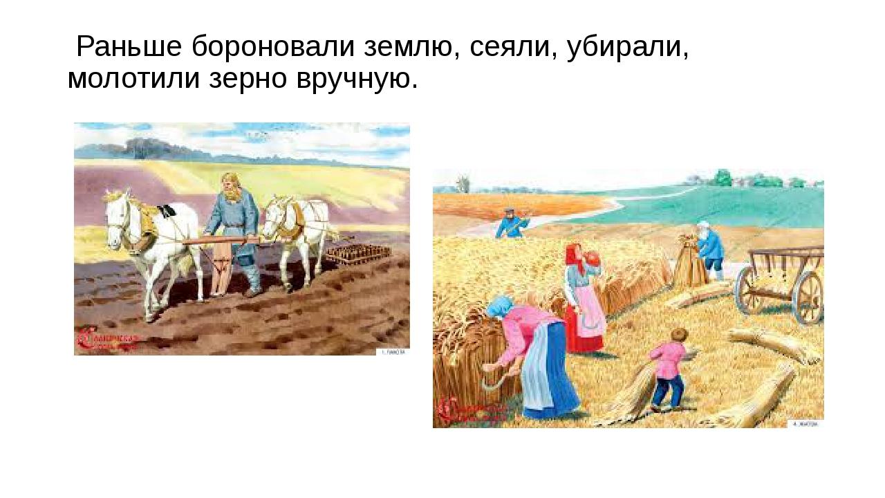 Раньше бороновали землю, сеяли, убирали, молотили зерно вручную.