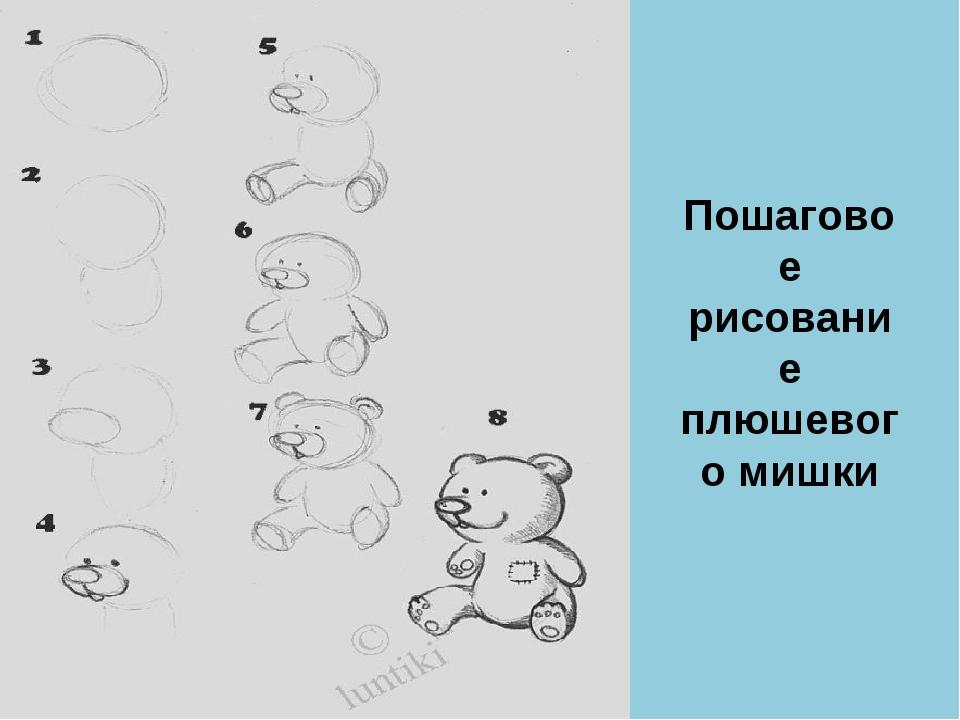 Пошаговое рисование плюшевого мишки