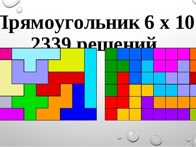 Прямоугольник 6 х 10 2339 решений