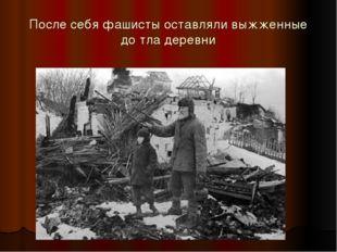 После себя фашисты оставляли выжженные до тла деревни