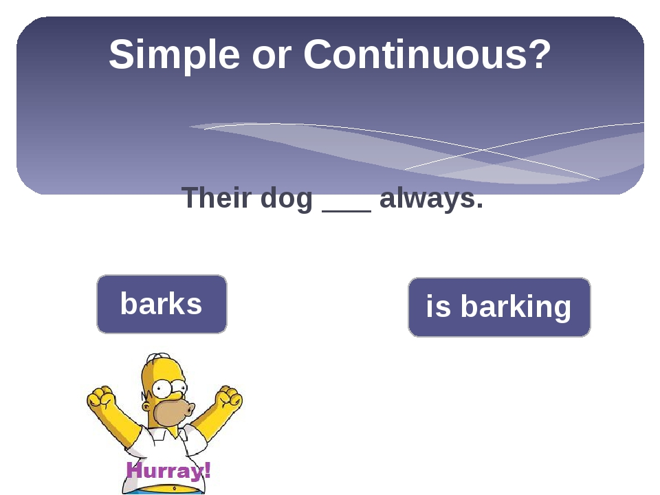 Simple or Continuous? Their dog ___ always. barks is barking