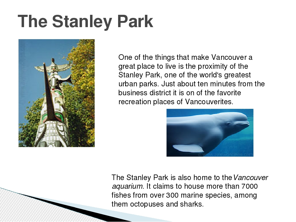 The Stanley Park One of the things that make Vancouver a great place to live...
