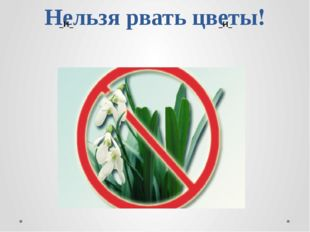 Нельзя рвать цветы! _И_ _И_