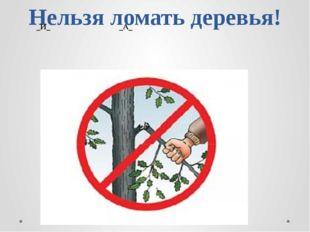 Нельзя ломать деревья! _И_ _А_