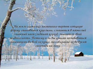 На земле снежинки постепенно теряют изящную форму, становятся круглыми, слипа