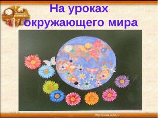 На уроках окружающего мира * *