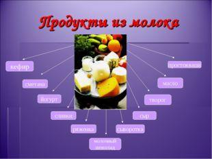 Продукты из молока кефир творог сливки сметана масло йогурт сыворотка молочны