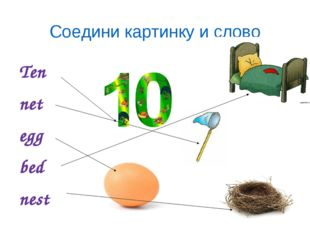 Ten net egg bed nest Соедини картинку и слово