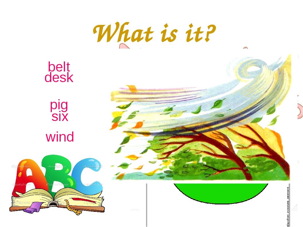 What is it? desk pig belt six wind