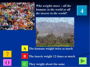 Who weights more – all the humans in the world or all the insects in the worl