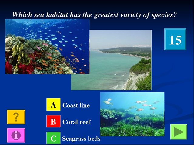 Which sea habitat has the greatest variety of species? A B C Coast line Coral...