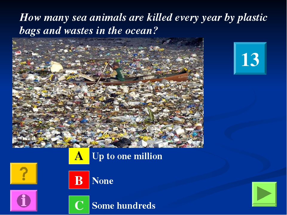 How many sea animals are killed every year by plastic bags and wastes in the...