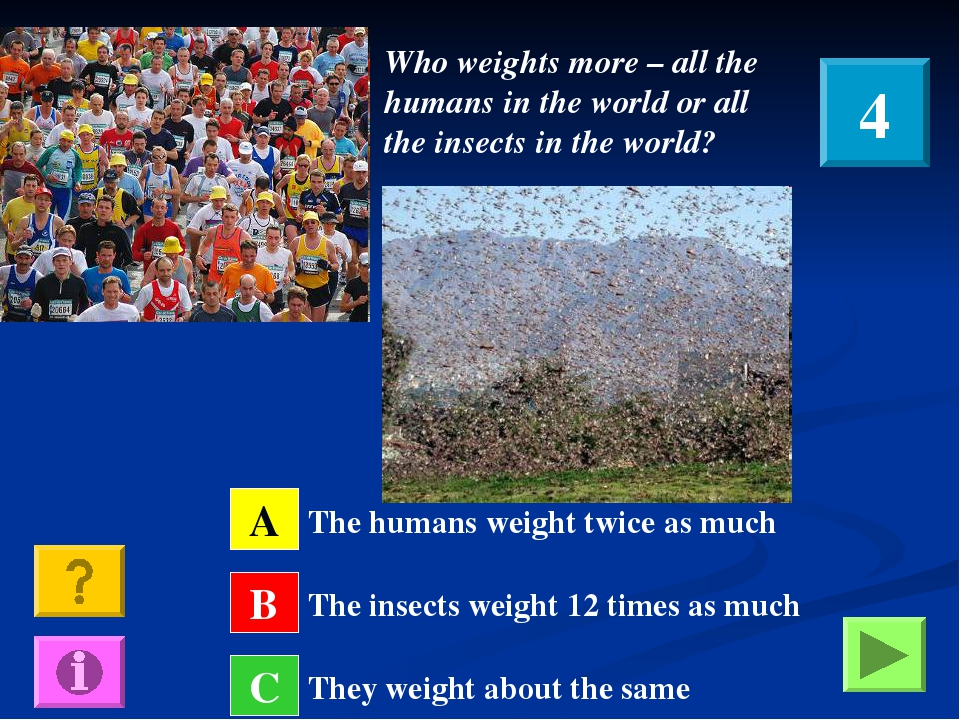Who weights more – all the humans in the world or all the insects in the worl...
