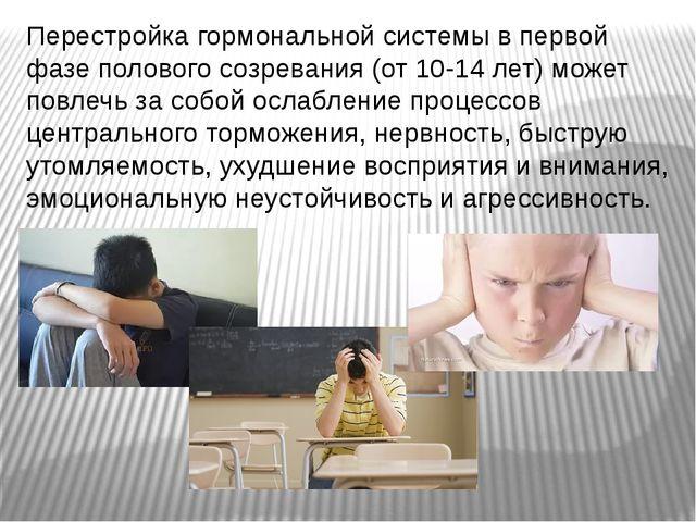 Перестройка гормональной системы в первой фазе полового созревания (от 10-14...