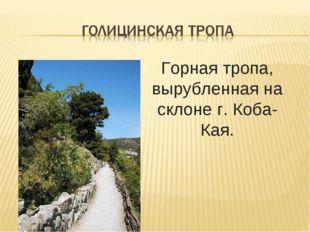 Горная тропа, вырубленная на склоне г. Коба-Кая.