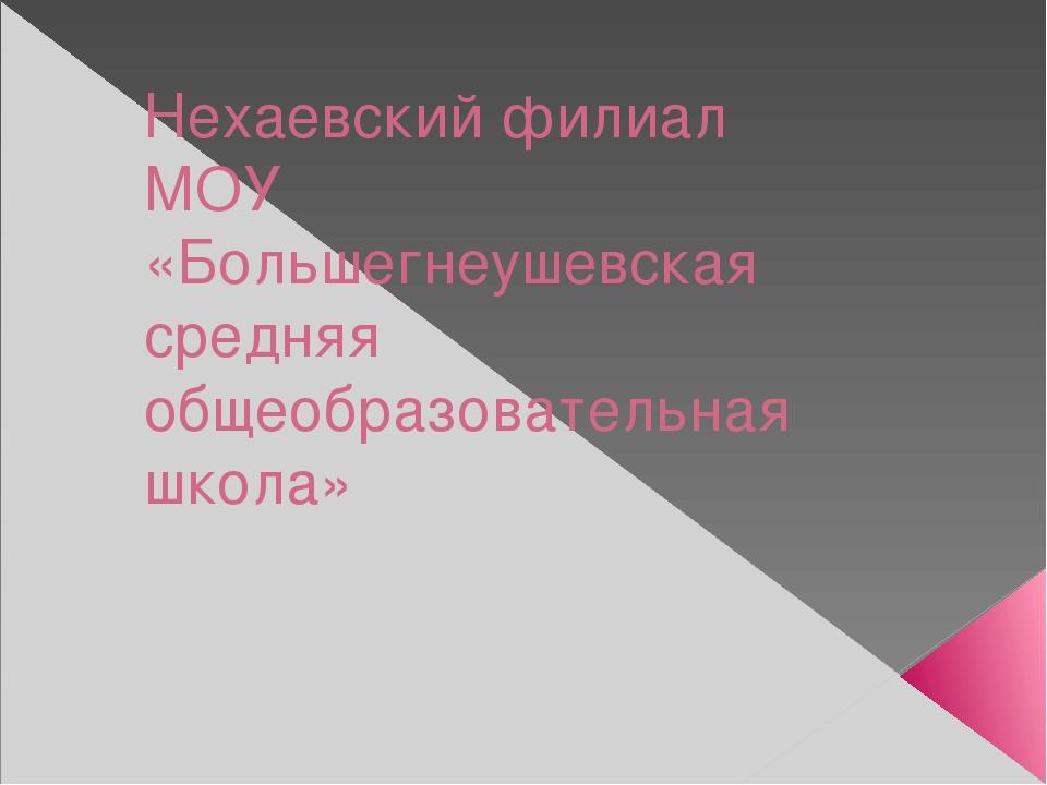 Нехаевский филиал МОУ «Большегнеушевская средняя общеобразовательная школа»