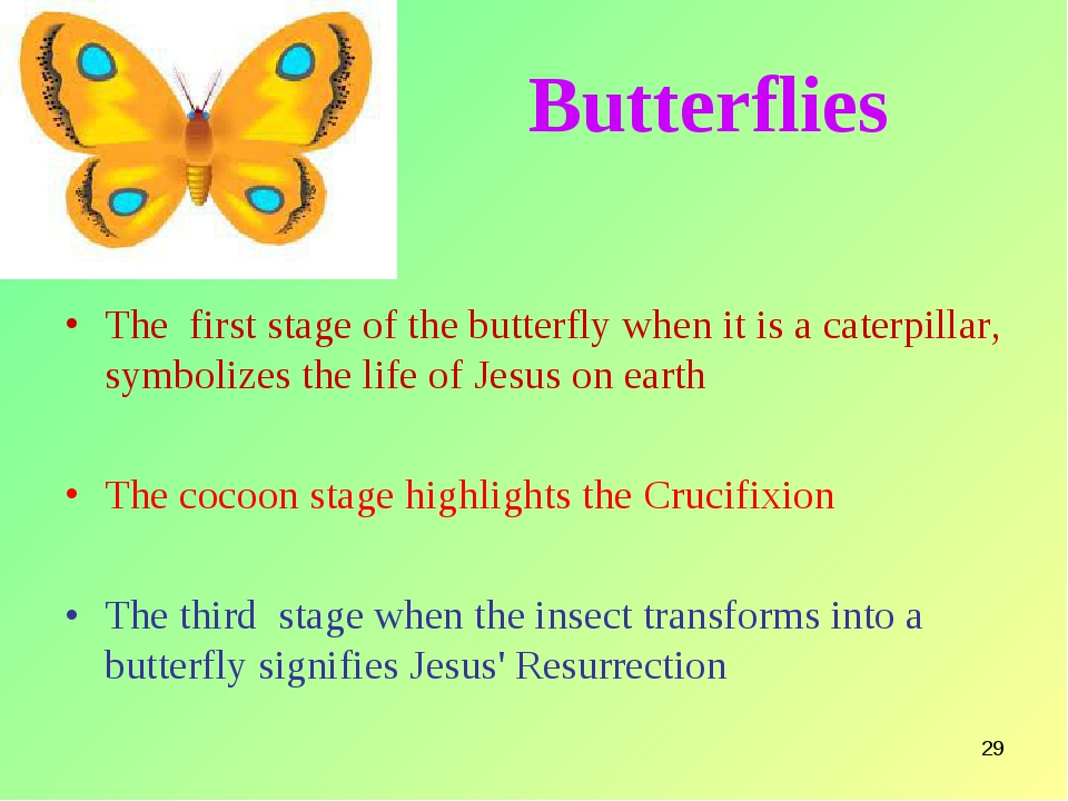 * Butterflies The first stage of the butterfly when it is a caterpillar, symb...