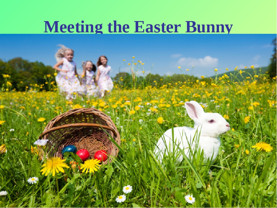 * Meeting the Easter Bunny