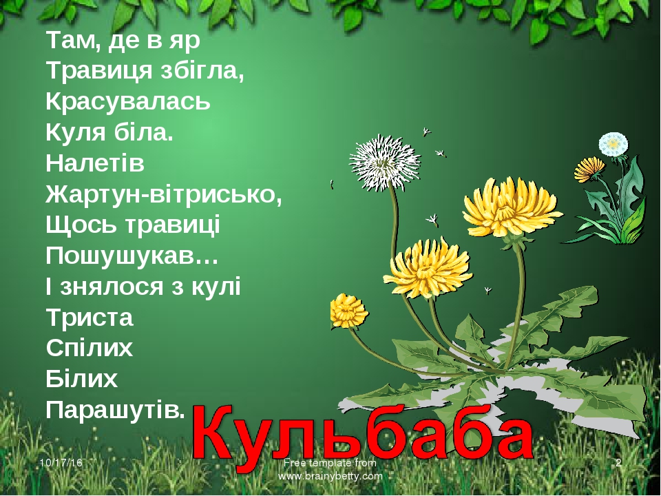 * Free template from www.brainybetty.com * Там, де в яр Травиця збігла, Красу...