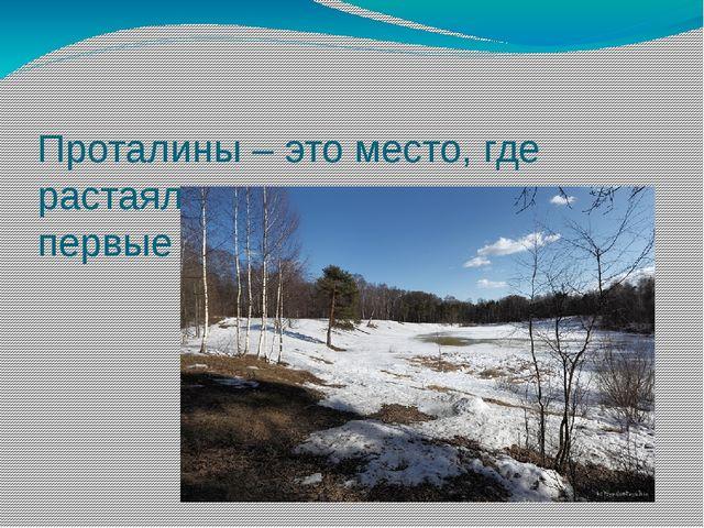 Проталины – это место, где растаял снег , и появились первые островки земли.