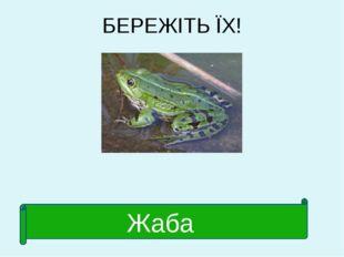 БЕРЕЖІТЬ ЇХ! Жаба